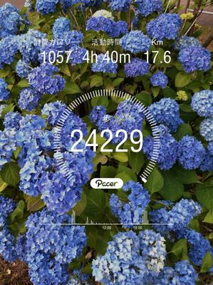 31FF883A-CD01-4BD0-9184-A710D828CAE4.jpg
